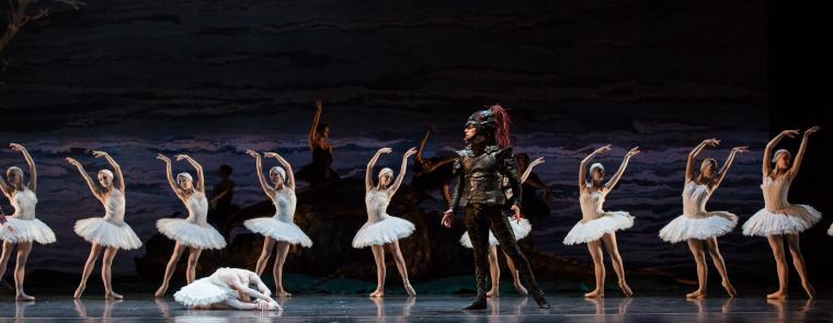 Houston Ballet in Swan Lake