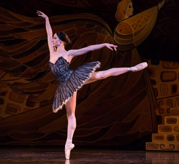 Houston Ballet in Swan Lake - Sara Webb
