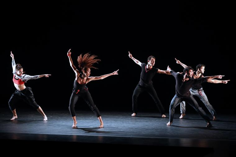 Malpaso Dance Company in Why You Follow